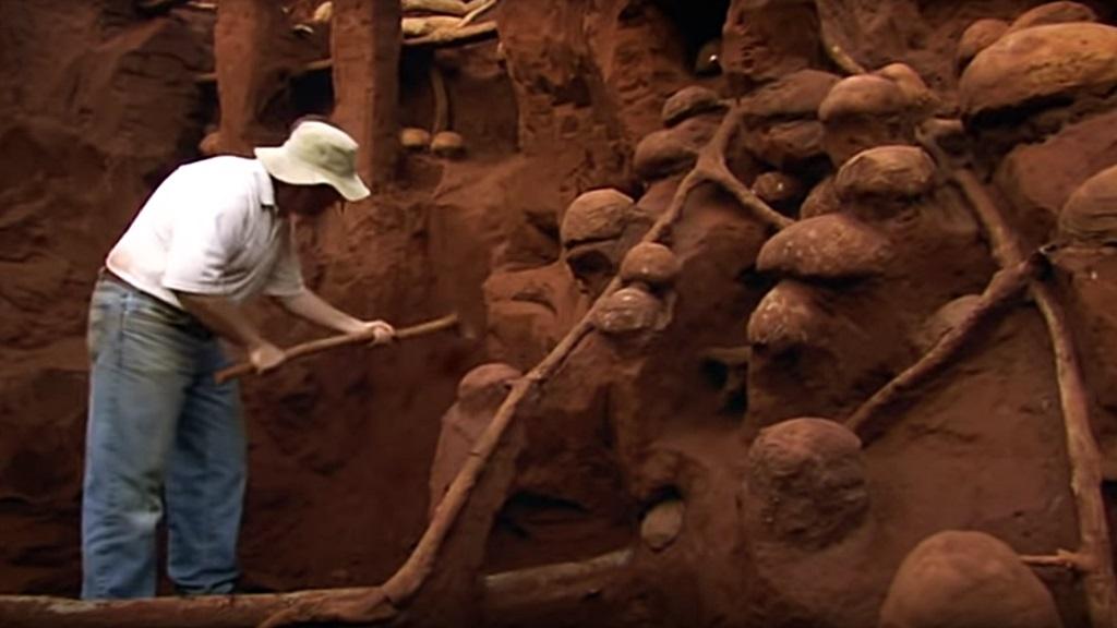 Riesiger Ameisenhügel ausgegraben